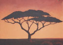 Wall Art by Allyson, Acacia tree,landscape mural, hand painted mural, mural,wall art, african landscape