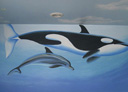 Wall Art by Allyson, Whale and Dolphin Mural, oceanic mural,whale mural,hand painted mural,dolphin mural,wall art,mural,